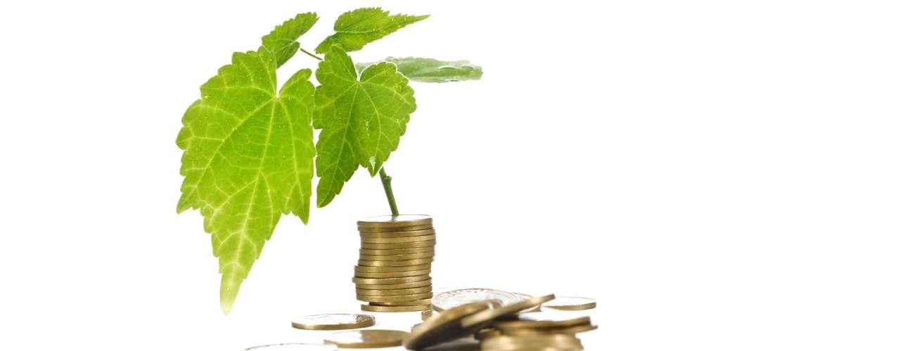 Bærekraftige verdier