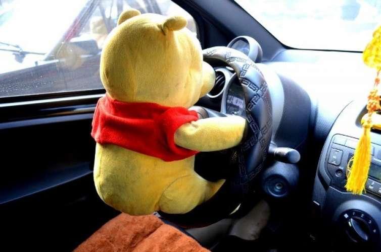 Bear driving small