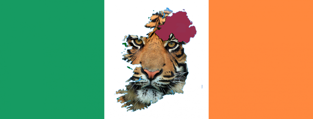 Celtic irland tiger